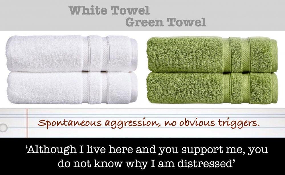 White Towel - Green Towel
